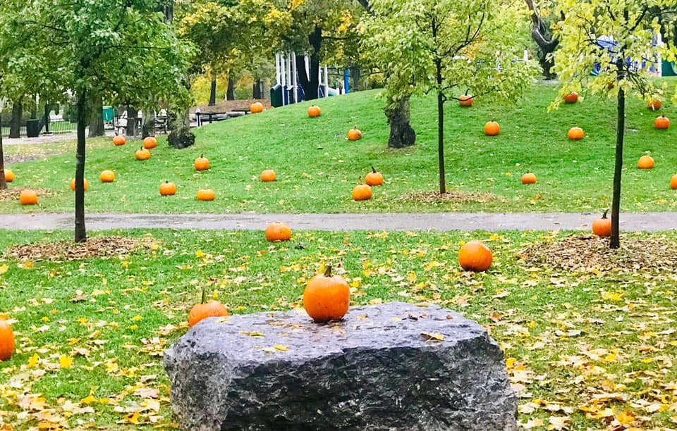 Halloween Pumpkin Patch in the Park